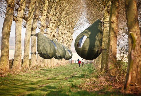 Dew Drop Tree Tents