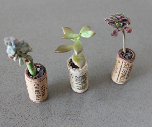 DIY: How to Make Adorable Recycled Wine Cork Planters for Under 10