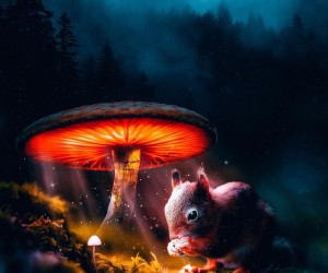 Dreamlike and Magical Photo Manipulations by Nick Asphodel