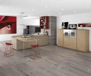 Dynamic Minimalist Kitchen With Red Accents