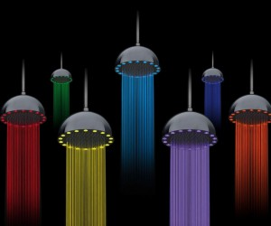 Dynamo Rainbow