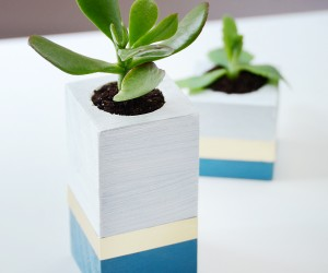 Easy DIY Succulent Planter