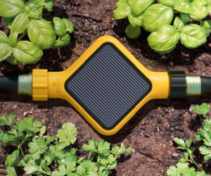 Edyn Garden Sensor: Your Technological Green Thumb