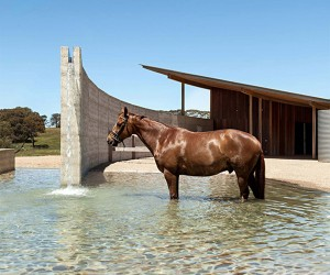 Equestrian Centre in Mornington