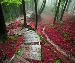 Fantastic Natural Landscapes in Switzerland by Sinhue Boksberger