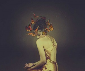 Fine Art Photography by Josephine Cardin