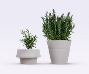 Fold Pot: The Pot that Grows with Your Plant