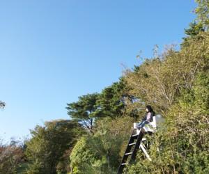 Garden Sky by Hidemi Nishida Studio