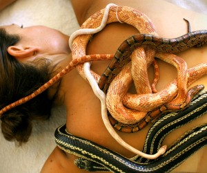 Get Massaged by Snakes in Indonesia
