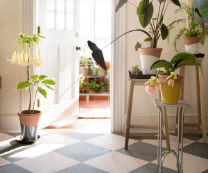 Get the Garden Home Look