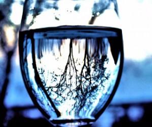 Glass, by Christine Keller