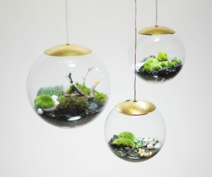 Globe - The Terrarium Lamp by Richard Clarkson Studio