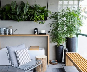 Hanging Plants For Green Homes