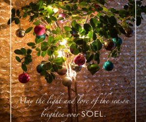 Happy Holidays from Soelberg Industries