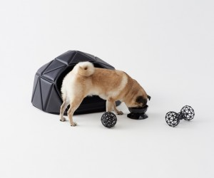 Heads or Tails Dog Accessory Collection by Nendo for PEN