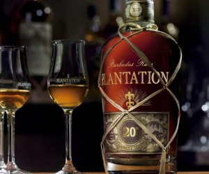Heres The 16 Most Rollicking Rums for Refined Drinkers