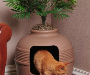 Hidden Litter: Plant for Litter-box
