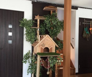 Homemade Cat Posts, Trees, and Houses