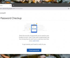 How to audit passwords with the Google Password Checkup tool