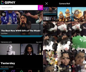 How to edit GIFs on an iPhone