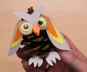 How to Make a Pinecone Owl