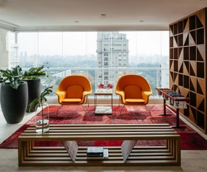 Ibirapuera Apartment  Mix of Contemporary and Brazilian Modern Classics
