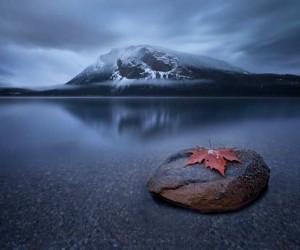 Impressive Landscapes by Sarah Cederholm