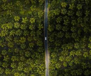 India From Above: Stunning Drone Photography by Saahil Rahman