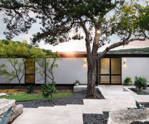 Inspired by the Iconic Farnsworth House: Modern Texas Home Cloaked in Greenery