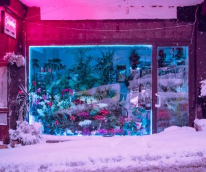 Istanbul at Night: Neon Colors, Foggy and Cinematic Nightscapes by Elsa Bleda