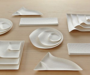 Japanese Paper Plates