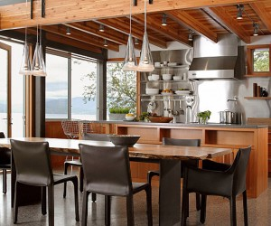 Kitchens With Stainless Steel Backsplashes