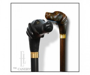 Labrador Retriever Walking cane