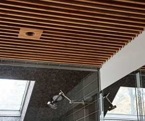 Lamboo Skyline Series Custom Profiled Ceiling Product Solutions