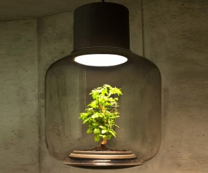 Lamp Mygdal Grows and Glows by Nui Studio