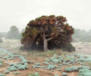Landscape Photography by Petros Koublis