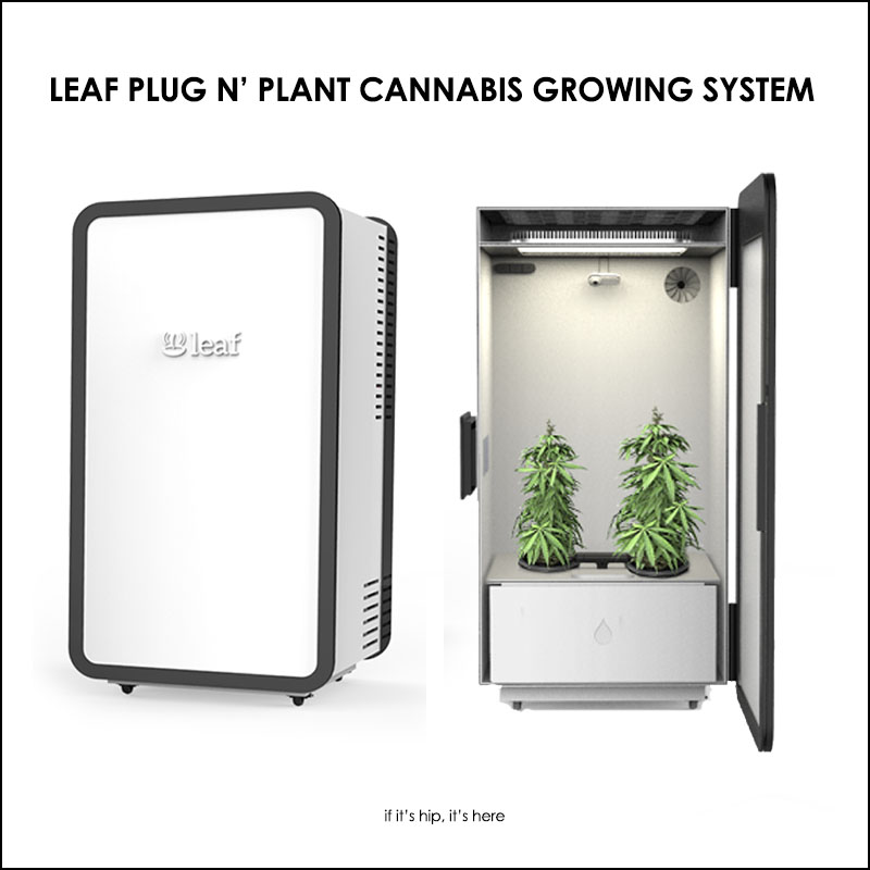 Leaf Plug N Plant Cannabis Growing System