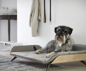 Letto Dog Bed