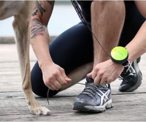 Lishinu | Hands-Free Dog Leash