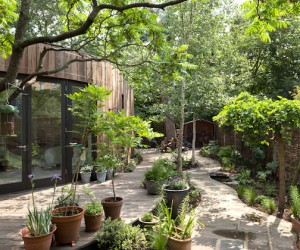 London Tree House by 6A Arch