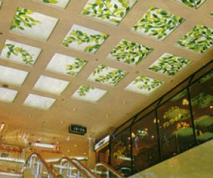 Luminous Skylights with Translucent Plastic Panels