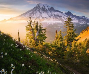 Magical Natural Landscape Photography by Ben Marar