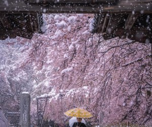Magical Urban and Natural Landscapes in Japan by Hiroki Furukawa