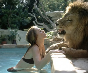 Melanie Griffith Living With A Lion