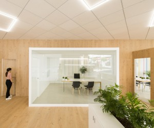 MEMORY  Offices Casado  Pujol by Pablo Muoz Pay Arquitectos