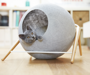 Meyou Designs Stylish Cat Beds