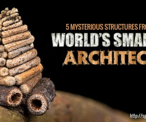 Mind blowing Stuctures From The Worlds Smallest Architects