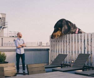 Mitch Boyer Photoshops His Vivian the Dog Into a Giant