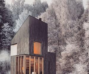 Modern Minimalism Meets Wooden Warmth inside Small Winter Retreat