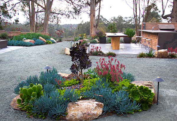 Modern Xeriscaping Ideas